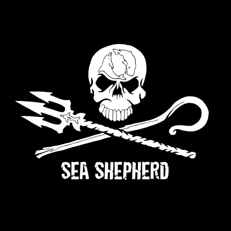 Interview with Reinhard Grabler, director of Sea Shepherd Austria about Brutal Assault and more…