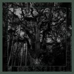 Recenze: Enisum - Seasons of Desolation