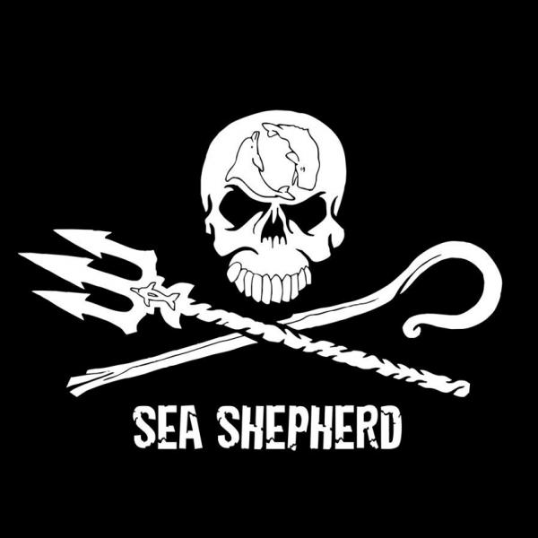S hudbou pro ochranu oceánů