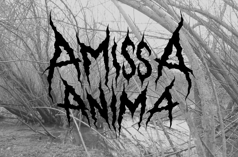 Amissa Anima – první skladba venku!