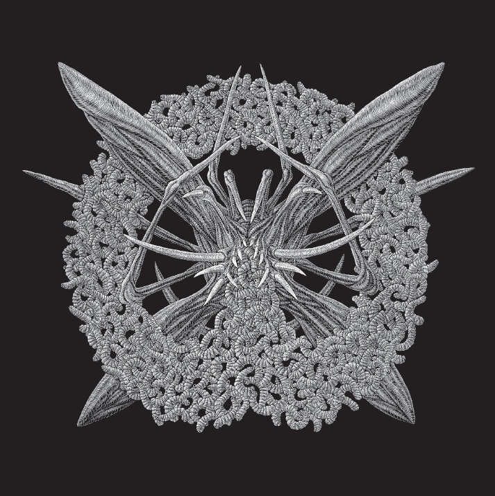 Recenze: Mallephyr – Womb of Worms