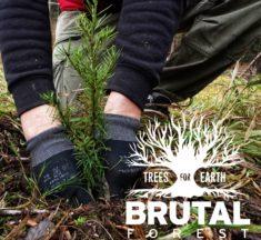 Návštěvníci, fanoušci a organizátoři festivalu Brutal Assault vysadili více než 2.000 stromů